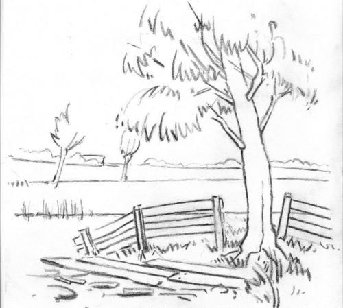 Landschap6