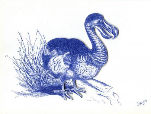 Dodo in 3d
