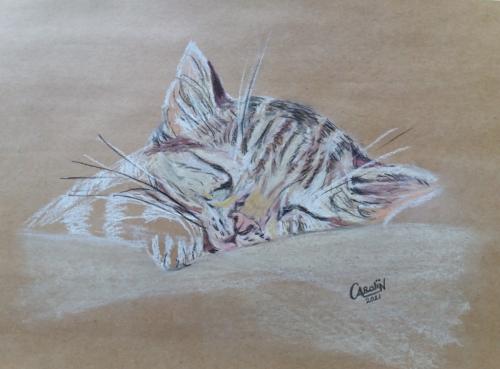 Kitten - tutorial Lineke Lijn - pastelkrijt op papier