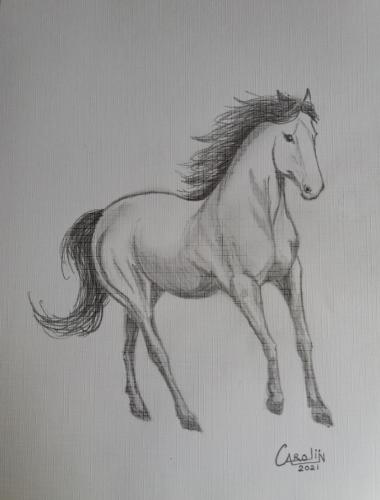 Paard - voorbeeld Pinterest - grafietpotlood op papier